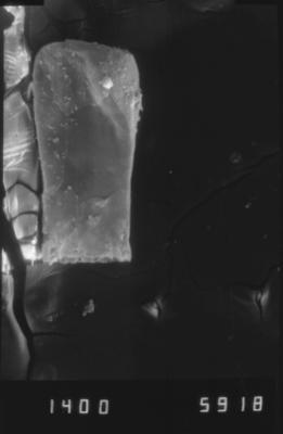 <i><i>Cingulochitina</i> | Cingulochitina? sp.</i><br />Dubovskoye borehole, 1274.00 m, Paadla Stage ( 754-1140)