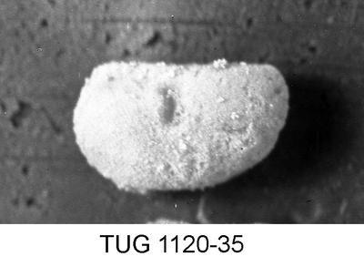 None, TUG 1120-35