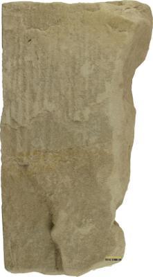 Skolithos linearis (Haldeman, 1840), TUG 1588-29