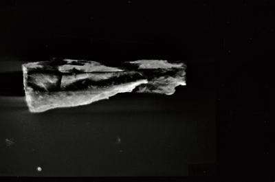 <i><i>Conochitina</i> | Conochitina sp.</i><br />Ventspils D-3 borehole, 856.00 m, Raikküla Stage ( 754-162)