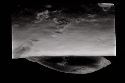 <i><i>Conochitina proboscifera</i> | Conochitina aff. proboscifera</i><br />Häädemeeste 172 borehole, 232.40 m, Raikküla Stage ( 754-627)