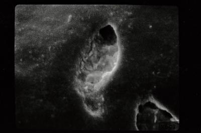 <i><i>Conochitina</i> | Conochitina sp. sp.</i><br />Ohesaare borehole, 202.80 m, Jaagarahu Stage ( 754-197)